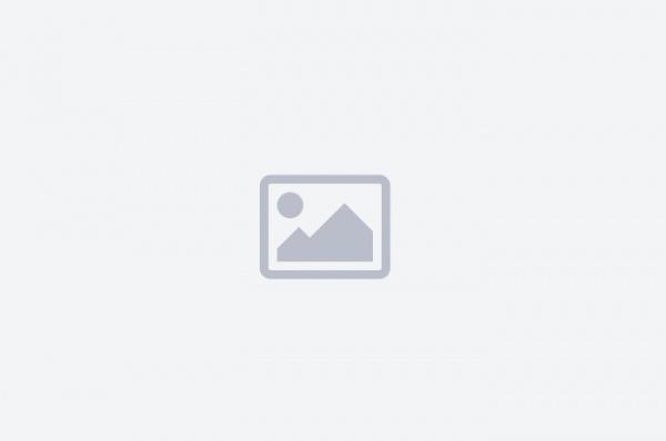 Por que muitos alunos terminam o ensino médio mas não sabem interpretar um texto?